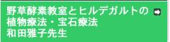 和田雅子 先生「野草酵素教室とヒルデガルトの植物療法・宝石療法」